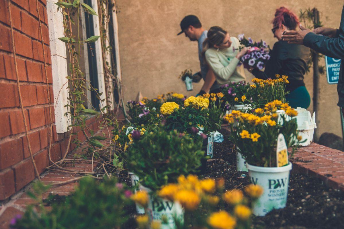 Březnová zahrada: vyhrňte si rukávy a nebojte se umazat. Už to začíná!